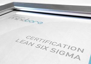 Programmes Lean Six Sigma